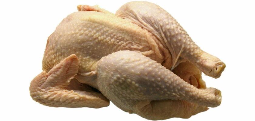 Sonhar com frango significado